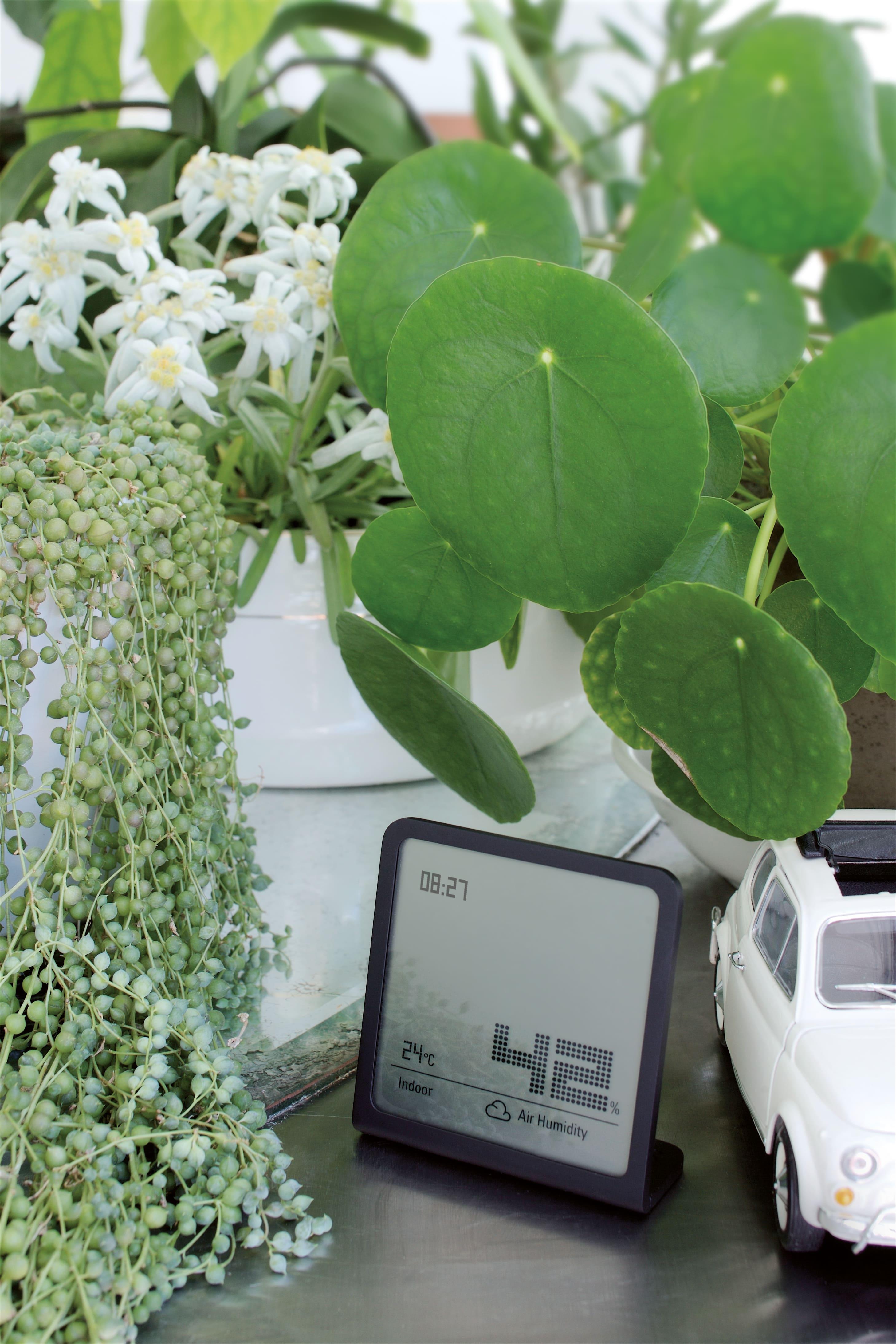 Hygrometer Selina